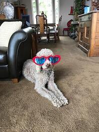Maggie with heart glasses