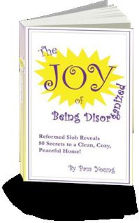 joyofbeingdisorganized-cover3