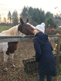 Kristi happily being kissed by a horse
